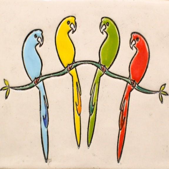 Parrots - big shot